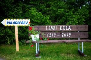 Kyladepaev Limu 2019